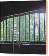 Iron Bars And Sunlight Wood Print