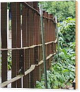Iron Fence Wood Print