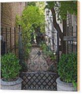 Iron Gate Alley Wood Print
