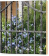 Iron Gate And Blue Flowers Wood Print