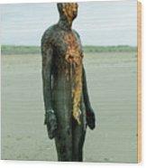 Iron Man Front, Crosby Beach Liverpool Wood Print