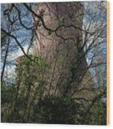 Ironbridge Cooling Tower Wood Print
