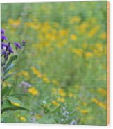 Ironweed Wood Print