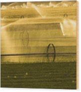 Irrigation System Operating At Sunset Wood Print