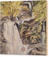 Iruppu Falls  Wood Print