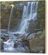 Irwin Falls Wood Print