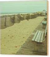 Is This A Beach Day - Jersey Shore Wood Print