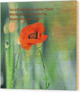 Isaiah 26 3 Of Beverly Guilliams Wood Print