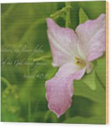 Isaiah Verse Wood Print