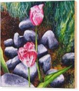 Isaiah's Tulips Wood Print