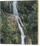 Isla Hoste Waterfall Wood Print