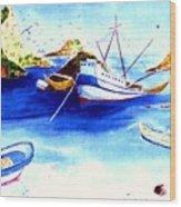 Isla Isabela Wood Print