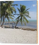 Islamorada Palms Wood Print