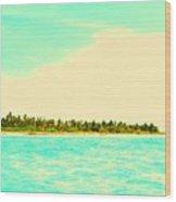 Island 7 Wood Print
