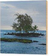 Island At Carlsmiths Wood Print