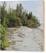 Island - Beach Wood Print