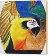 Island Bird Se Wood Print