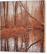 Island Creek Story Wood Print