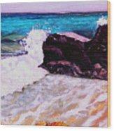 Island Cruise Wood Print