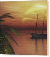 Island Explorer  Wood Print