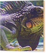 Island Iguana Wood Print