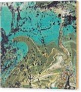 Island Lagoon Wood Print