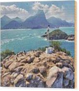 Island Lighthouse Wood Print