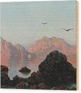 Island Of Capri Wood Print