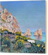 Island Of Capri - Gulf Of Naples Wood Print
