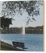 Island Park In Portage Wood Print