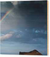 Island Rainbow Wood Print