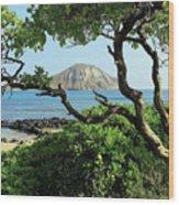 Island Through The Trees Wood Print