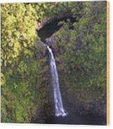 Island Waterfall Wood Print