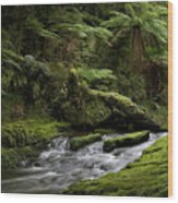 Islands Of Green 2 Wood Print