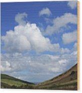 Isle Of Arran Wood Print