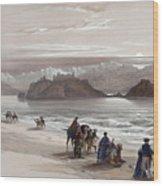 Isle Of Graia Gulf Of Akabah Arabia Petraea Feby 27th 1839 Wood Print