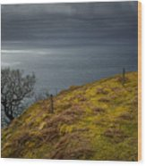 Isle Of Skye Views Wood Print