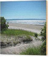 Isolated Beach Wood Print