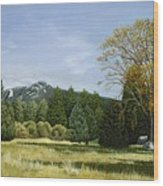 Isomata Meadow Wood Print