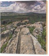 Israel Landscape Wood Print
