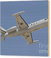 Israeli Air Force 1124n Seascan Patrol Wood Print
