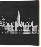 Istanbul Fountain Lights Wood Print