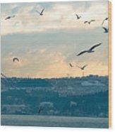 Istanbul, Morning Wood Print
