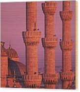 Istanbul, Turkey, Blue Mosque Wood Print