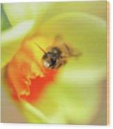 It Just Wouldn't Bee Spring Without ... Wood Print