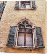 Italian Architecture Wood Print