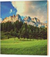 Italian Mountain Meadow Wood Print