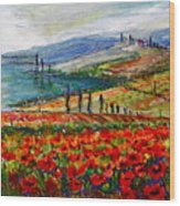 Italy Tuscan Poppies Wood Print
