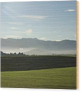 Italy's Country Side Wood Print