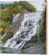 Ithaca Falls Wood Print
